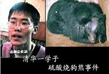 刘海洋伤熊事件结局_象牙塔内大学生的心理健康-青岛新闻网健康